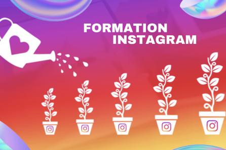 80,000 abonnés Instagram en 6 mois avec un taux d'engagement très élevé