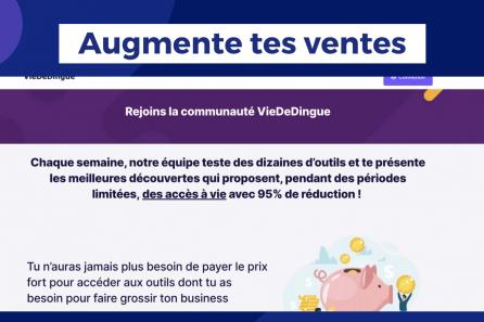 Comment une simple phrase à augmenter les ventes de la plateforme VieDeDingue